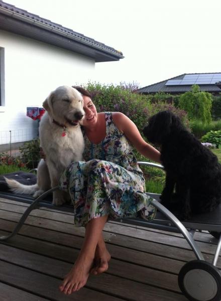 Nellie og Pumba Labradoodle F1 trimmehunde