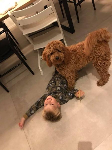 Bailey fra Lulu og Soul 1